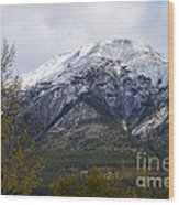 Canmore Rocky Mountain View  Wood Print