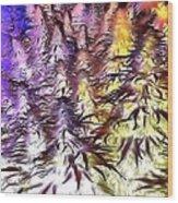 Canna Dusk 4 Wood Print