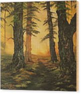 Cannock Chase Forest In Sunlight Wood Print