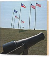 Cannon At Fort Sumter Wood Print
