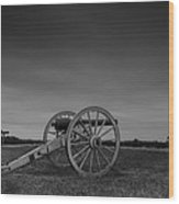 Cannon At Henry Hill Wood Print