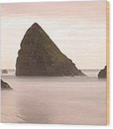 Cannon Beach - 1 Wood Print by Maxwell Amaro