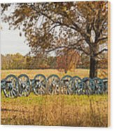 Cannons Wood Print