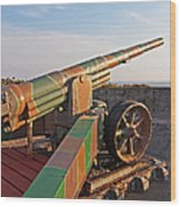 Cannon In Fortress Wood Print