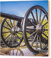 Cannon In New Orleans Washington Artillery Park Wood Print
