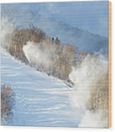 Cannon Mountain Ski Area - Franconia Notch State Park New Hampshire Wood Print