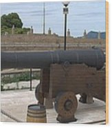 cannon of the old fort Corfu Wood Print