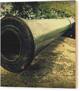 Elephanta Island Cannon Wood Print