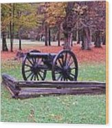 Cannon On The Parade Grounds Wood Print