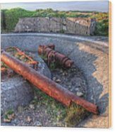 Cannon Remains From Ww2 Wood Print