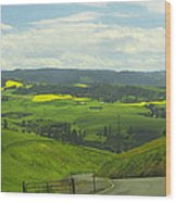 Canola Country Road Wood Print