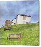 Canons On The Hill Above Tenby Wales Wood Print