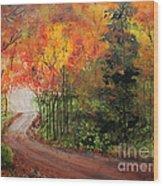Canopy Of Colors Wood Print