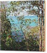 Canopy Vista Wood Print