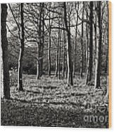 Can't See The Wood For The Trees Wood Print