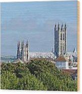 Canterbury Cathedral From Dane John Mound Wood Print