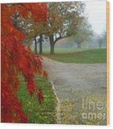 Cantiague Park  Wood Print