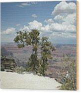 Canyon And Sky Wood Print