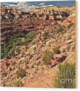 Canyon At Calf Creek Wood Print