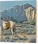 Canyon Country Paints Wood Print by Paul Krapf