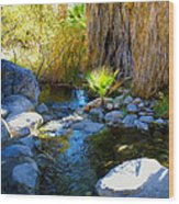 Canyon Creek Baby Palm Wood Print