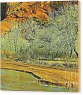 Canyon De Chelly - Spring I Wood Print