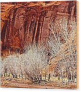 Canyon De Chelly - Spring II Wood Print