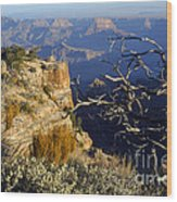 Canyon Foliage Wood Print