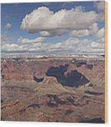 Canyon Of Canyons Wood Print