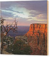Canyon Rim Tree Wood Print