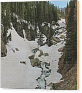 Canyon Scenery Wood Print