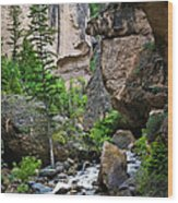 Canyon Serenity - Crazy Woman Creek - Crazy Woman Canyon - Johnson County - Wyoming Wood Print