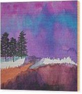 Canyon Shadows Wood Print