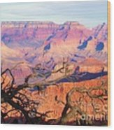 Canyon Shadows Wood Print by Janice Sakry