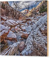 Canyon Stream Winterized Wood Print