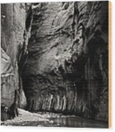 Canyon Trail 3 Wood Print
