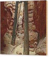 Canyon Trail Wood Print