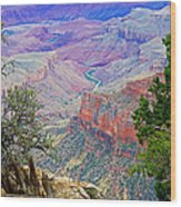 Canyon View From Walhalla Overlook On North Rim Of Grand Canyon-arizona  Wood Print