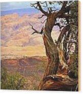 Canyon Vista 1 Wood Print