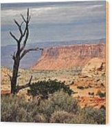 Canyon Vista 2 Wood Print