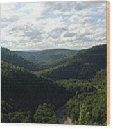 Canyon Vista Wood Print