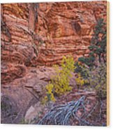 Canyon Walls Wood Print