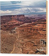 Canyonland Wood Print by Robert Bales