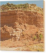 Canyonlands In West Texas Wood Print