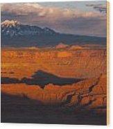 Canyonlands Light Wood Print