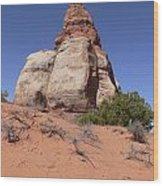 Canyonlands Monolith Wood Print