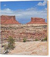 Canyonlands Utah Landscape Wood Print