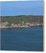 Cap Frehel Peninsula In Cotes-darmor Wood Print