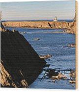 Cape Arago Lighthouse 2 Wood Print