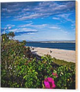 Cape Cod Beach Wood Print